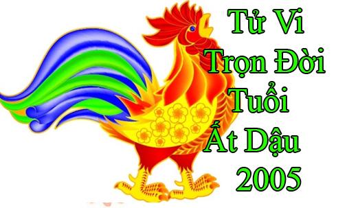 tu-vi-tron-doi-tuoi-at dau 2005