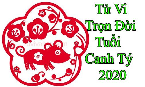 tu-vi-tron-doi-tuoi-canh ty 2020