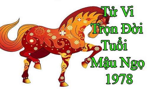 tu-vi-tron-doi-tuoi-mau ngo 1978