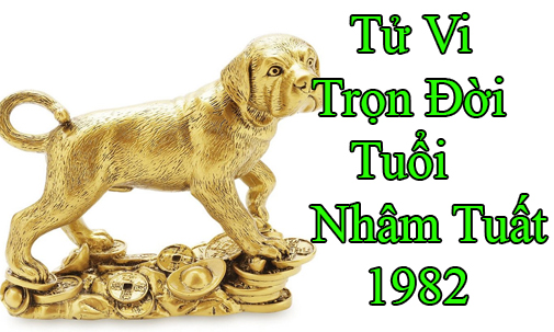 tu-vi-tron-doi-tuoi nham tuat 1982