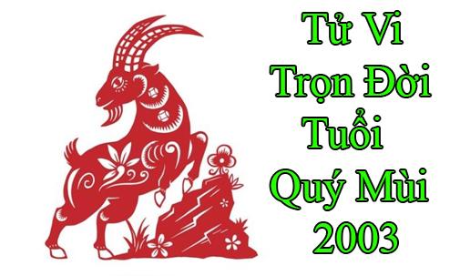tu-vi-tron-doi-tuoi-quy mui 2003
