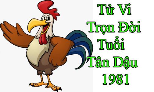 tu-vi-tron-doi-tuoi-tan dau 1981