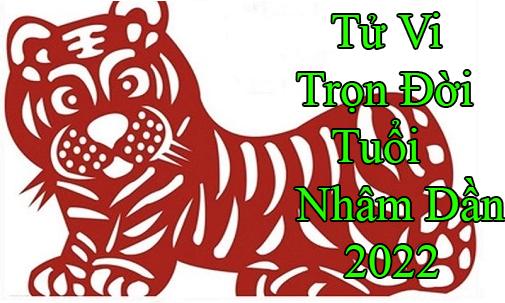 tu-vi-tron-doi-tuoi-nham dan 2022