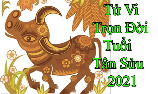 tu-vi-tron-doi-tuoi-tan suu 2021